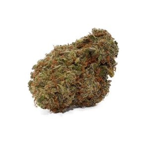 mango cannabis strain for sale