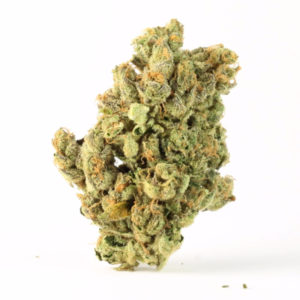 Jack Herer For Sale